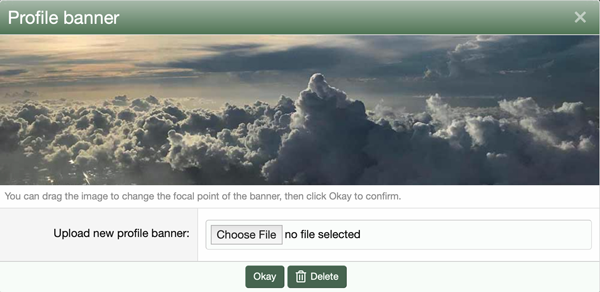 Profile banner dialog