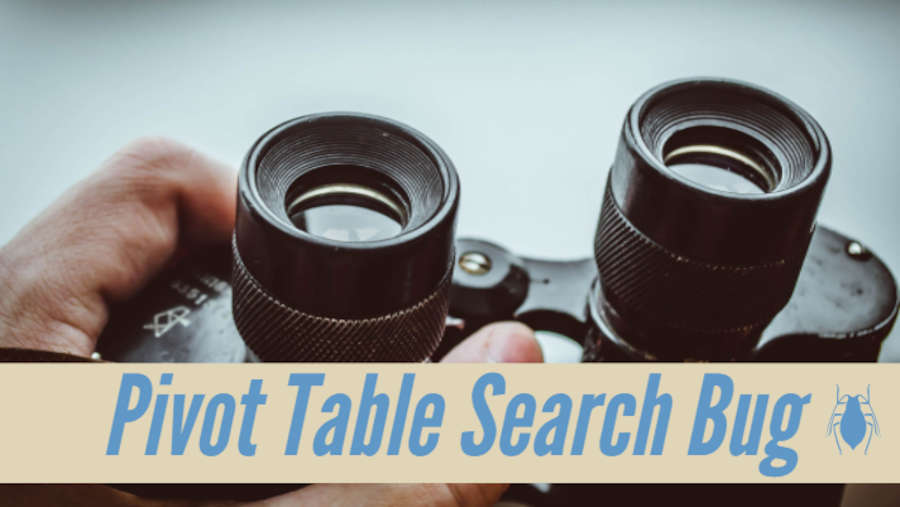 Pivot Table Search Bug