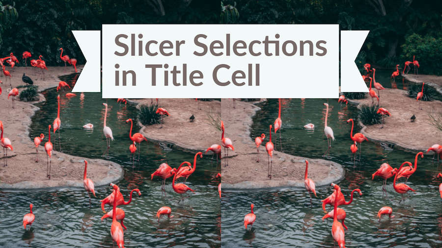 Slicer Selections in Title