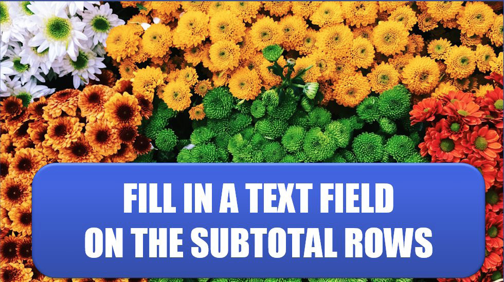 Excel Fill in a Text Field on the Subtotal Rows. Photo Credit: Jan Antonin Kolar at Unsplash.com