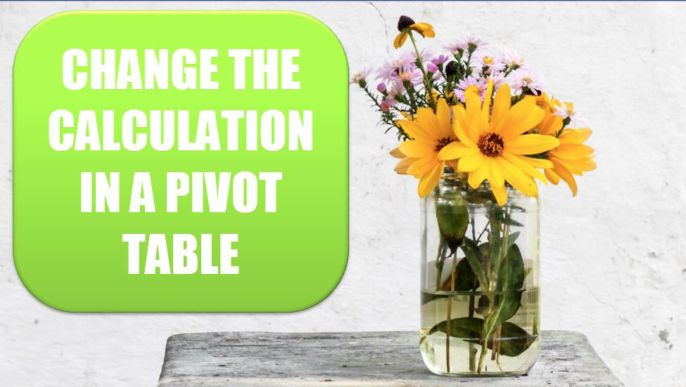 Change the Calculation in a Pivot Table. Photo Credit: NordWood Themes at Unsplash.com