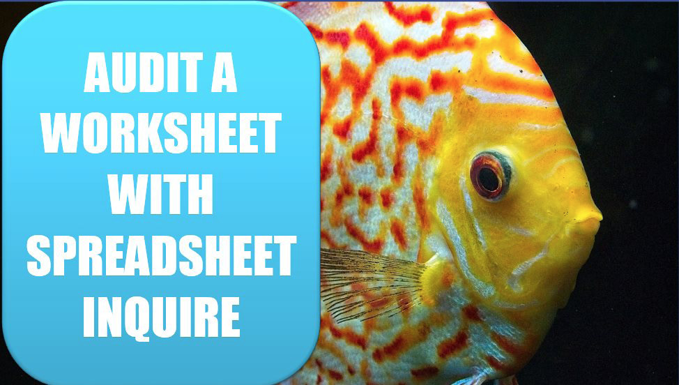 Audit a Worksheet With Spreadsheet Inquire. Photo Credit: Michael Rodock at Unsplash.com